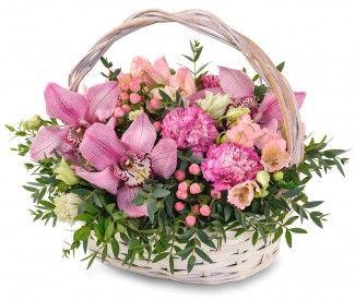 Цветов доставка цветов в петрозаводске из другого города цветов сакура липецк